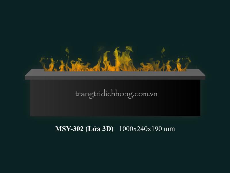 MSY 302 (3D)